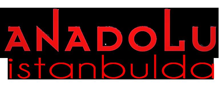 İstanbulda Anadolu Güzel Sanatlar Nerede