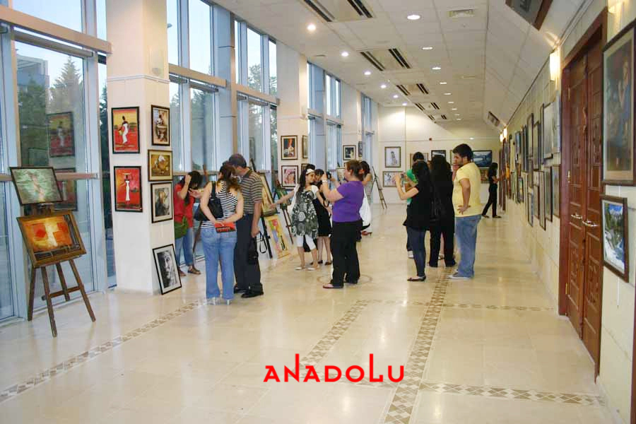 Anadolu Guzel Sanatlar Egitim Kurumlari Çukurova